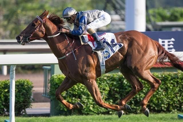 エセロが実績馬を尻目に逃げ切り、香港G2ジョッキークラブスプリント ...