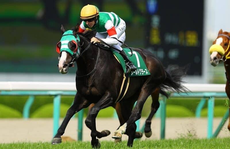 メールドグラース | 競馬データベース | JRA-VAN Ver.World