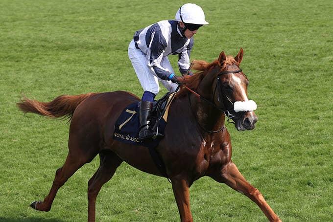 日本馬の歴史 |  凱旋門賞 | JRA-VAN